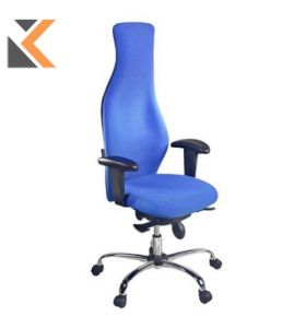 Physio High Back Ergonomic Task Chair