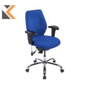 Physio Medium Back Ergo Task Blue Chair