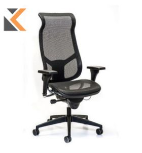 Interstuhl Airspace - [3642] Management Chair High Back Mesh Black