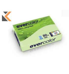 Evercolour Recycled-Green Paper A4 80 Gsm - [1 Ream Of 500 Sheets]